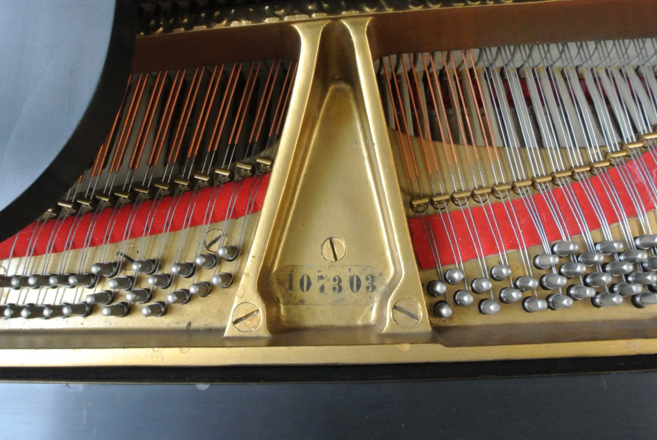 where to find your grand piano's serial number